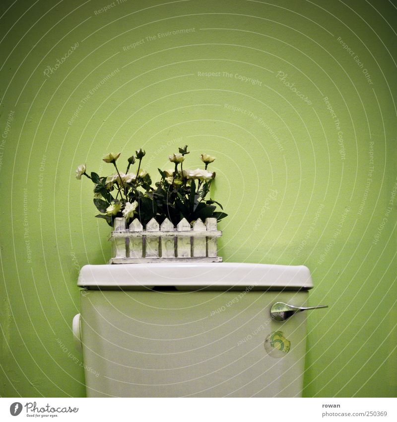 Green Flower Style Flat (apartment) Exceptional Design Living or residing Decoration Lifestyle Uniqueness Bathroom Kitsch Toilet Furniture Trashy Hip & trendy