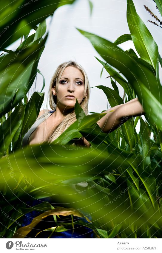 Human being Nature Youth (Young adults) Green Beautiful Plant Summer Dark Landscape Style Adults Field Blonde Fear Elegant Esthetic