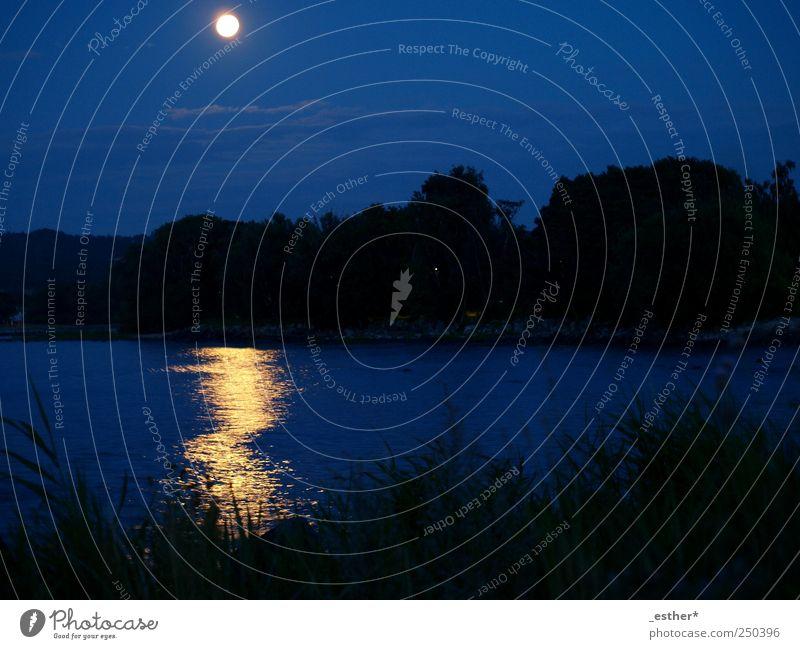 Nature Water Blue Ocean Calm Freedom Coast Horizon Moon Baltic Sea Night sky Full  moon