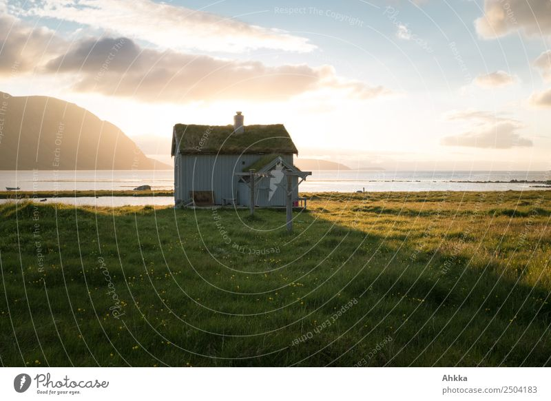 A place to be ... Dream cottage on the beach in Norway Vacation & Travel Adventure Landscape Summer Bay Fjord Midnight sun Arctic Ocean Hut Happy Contentment