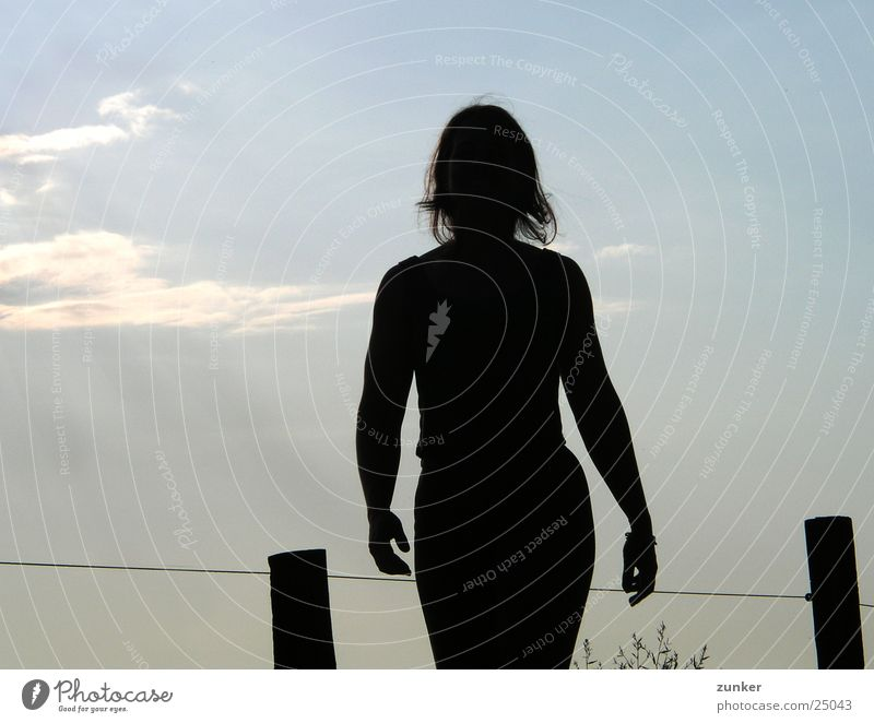 Sun in your back Back-light Woman Feminine Black Slate blue Fence Clouds Sky Shadow Structures and shapes