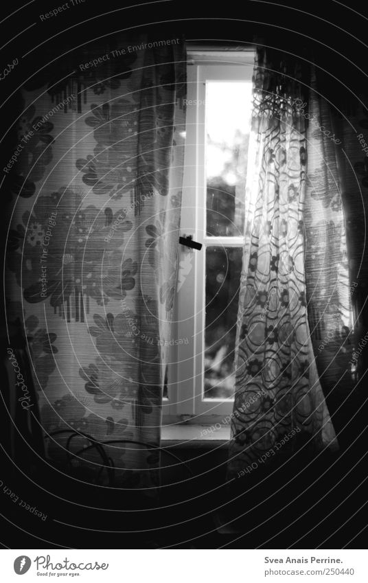 Window to the soul. Drape Window pane Shutter Window board Window frame Curtain Dark Retro Homesickness Wanderlust Homey Flowery pattern Black & white photo