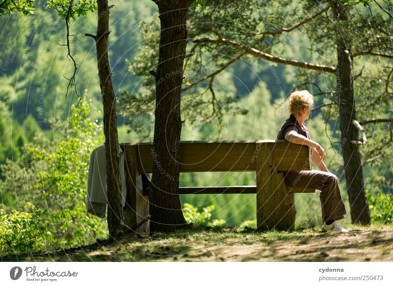 Human being Woman Nature Tree Vacation & Travel Summer Calm Adults Forest Far-off places Relaxation Environment Landscape Life Senior citizen Freedom