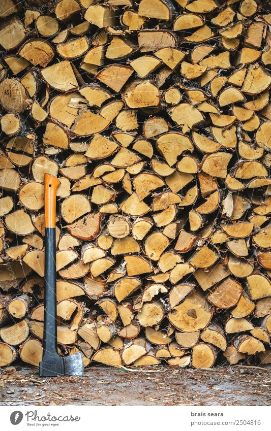 Pile of wood to burn and axe Design Winter Work and employment Agriculture Forestry Industry Group Art Environment Nature Earth Tree Wood Old Natural Brown