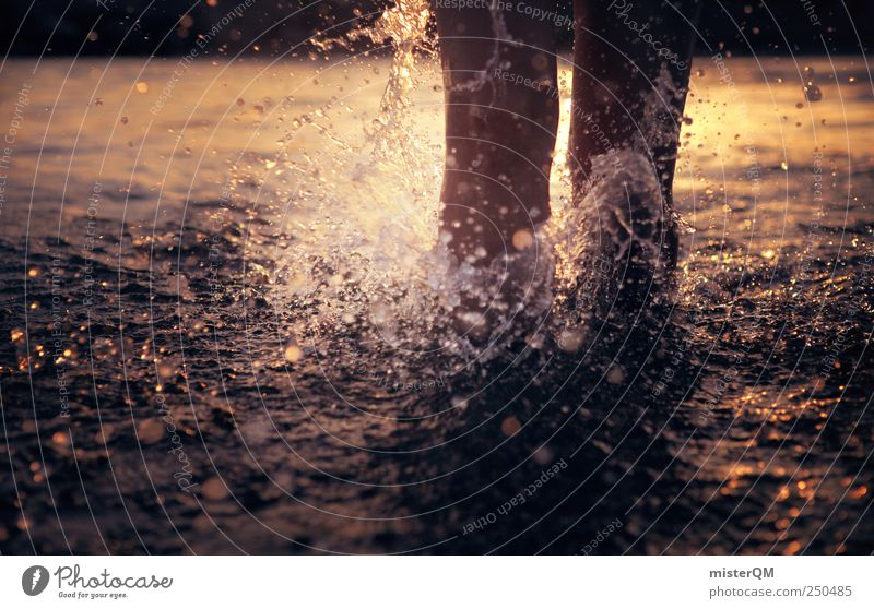 feeling summer. Nature Esthetic Pure Touch Water Splash of water Summer Open-air swimming pool Walking Running Joy Particle Dive Life Surface of water Ocean