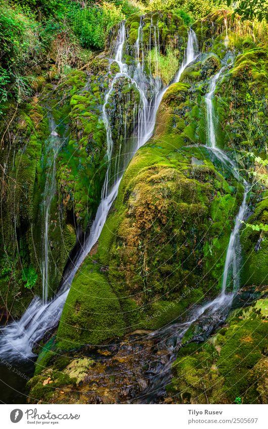 Tobera Beautiful Vacation & Travel Tourism Adventure Mountain Hiking Nature Landscape Forest Rock Brook River Waterfall Movement Fresh Small Green cascade