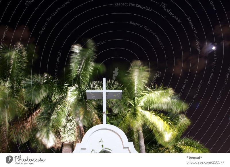 iGod Night sky Moon Plant Tree Palm tree Garden Park Church Manmade structures Tourist Attraction Crucifix Movement Illuminate Dark Exotic Historic Emotions