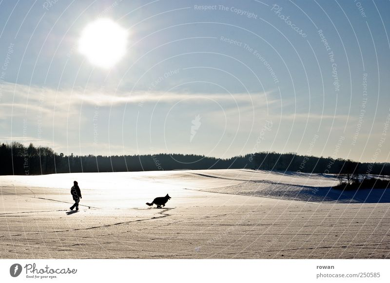Human being Man Sun Winter Animal Forest Relaxation Cold Snow Playing Landscape Dog Adults Field Trip Walking