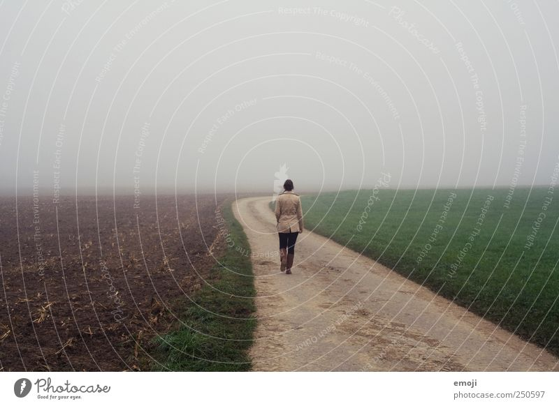 Human being Nature Loneliness Environment Autumn Cold Landscape Gray Lanes & trails Field Going Fog Walking Empty Gloomy To go for a walk