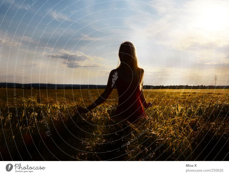 unfettered Human being Feminine Young woman Youth (Young adults) 1 18 - 30 years Adults Field Bright Beautiful Moody Hope Calm Colour photo Multicoloured