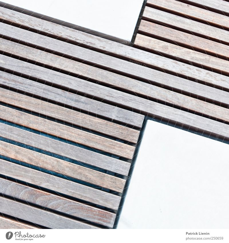city zebra Art Work of art Places Exceptional Wood Wooden board Line Structures and shapes Colour photo Exterior shot Close-up Detail Pattern Deserted
