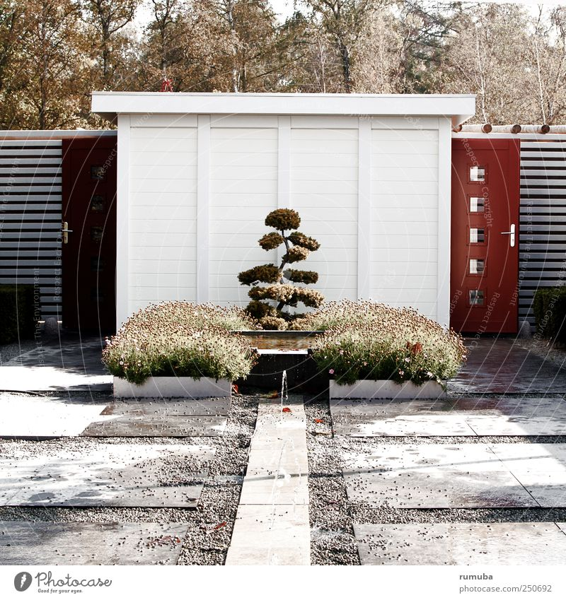 Sky Nature White Tree Plant Animal Wall (building) Landscape Architecture Garden Gray Wall (barrier) Park Brown Door Bushes