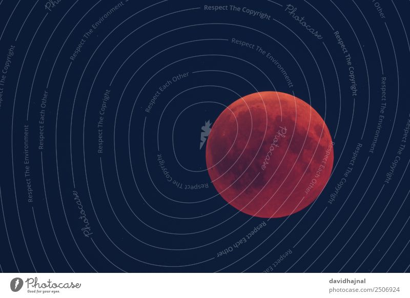 Lunar Eclipse 27 July 2018: Evening Twilight Far-off places Freedom Expedition Telescope Science & Research Astronomy Environment Nature Sky only Cloudless sky