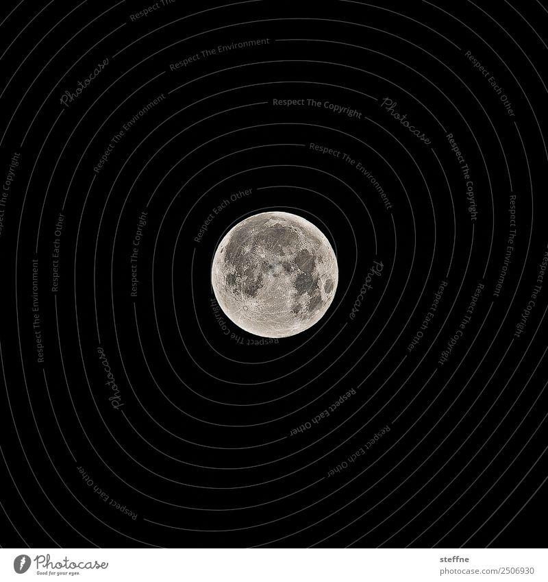Nature Future Moon Full  moon Werewolf Moonstruck Astrology Insomnia