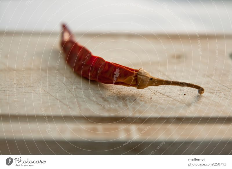 sharp blurred Food Vegetable Herbs and spices Chili Husk Nutrition Chopping board Old Brown Red Tangy Wrinkles Dried Mild Sheath Mat Blur Colour photo Deserted