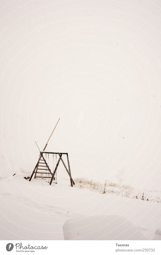 snow blind Landscape Winter Bad weather Fog Snow Playground Playing Fresh Cold Joy Colour photo Subdued colour Exterior shot Deserted Copy Space top