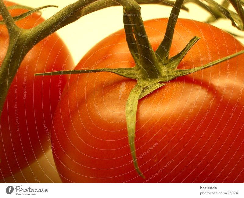 tomato Red Delicious Healthy Vegetable Tomato Vegetarian diet