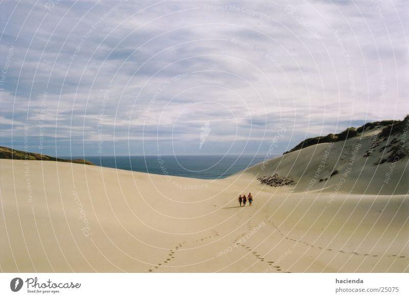 Beach Large Horizon Beach dune New Zealand