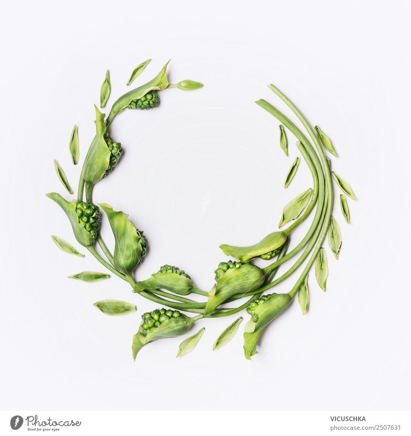 Green wreath with flowers and plants on white Style Design Beautiful Summer Decoration Nature Plant Flower Leaf Blossom Background picture entwine Wreath Round