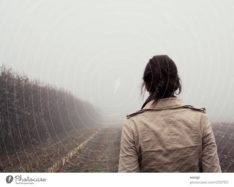 Sherlocke Holmes Young woman Youth (Young adults) 1 Human being 18 - 30 years Adults Environment Nature Earth Autumn Bad weather Fog Field Brown Gray Fog bank