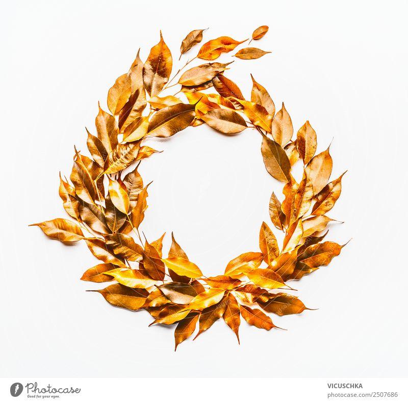 autumn leaves wreath on white Style Design Nature Plant Autumn Leaf Decoration Ornament Yellow Gold Background picture Conceptual design Wreath