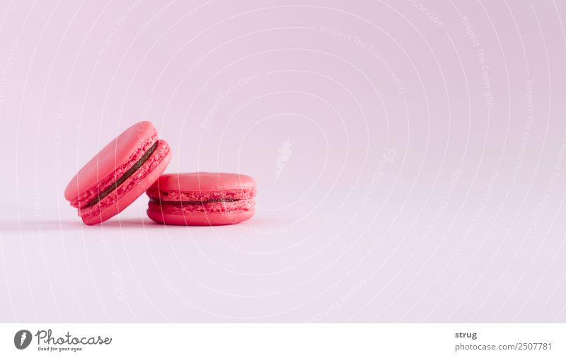 Sweet red french macaron. Summer Blue Colour Green White Red Adults Yellow Love Copy Space Pink Above Retro Vantage point Paper Mother