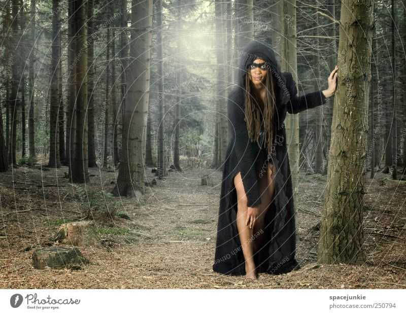 the wolf Feminine Young woman Youth (Young adults) Woman Adults 1 Human being 18 - 30 years Landscape Tree Bushes Fern Observe Touch Exceptional Exotic