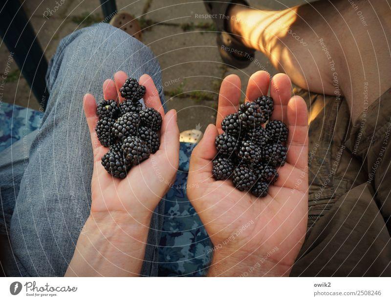 All hands full to do Human being Masculine Feminine Woman Adults Man Couple Partner Life Fingers Legs Feet Hand Women`s hand Men`s hand 2 45 - 60 years