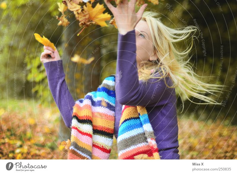 Autumn Leisure and hobbies Human being Young woman Youth (Young adults) 1 18 - 30 years Adults Beautiful weather Tree Leaf Garden Forest Flying Laughter Throw