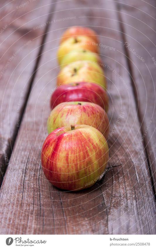 a series of apples Food Fruit Organic produce Vegetarian diet Healthy Eating Summer Autumn Wood Select Fresh To enjoy Apple Row Arrangement Apple harvest