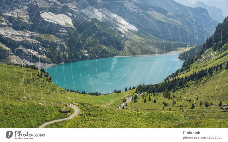 Nature Vacation & Travel Summer Blue Water Green Sun Landscape Tree Mountain Meadow Grass Tourism Freedom Lake Swimming & Bathing