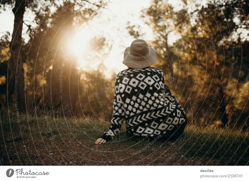 Sitting girl in her back looking at sunset in nature Woman Human being Nature Vacation & Travel Youth (Young adults) Young woman Blue Green Sun Landscape Tree