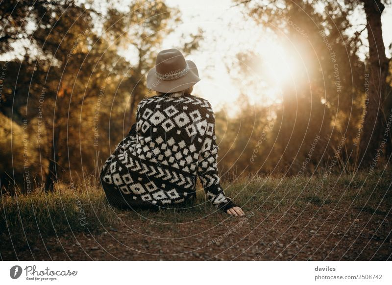 Sitting girl in her back looking at sunset in nature Woman Human being Nature Vacation & Travel Youth (Young adults) Blue Beautiful Green Sun Landscape Tree