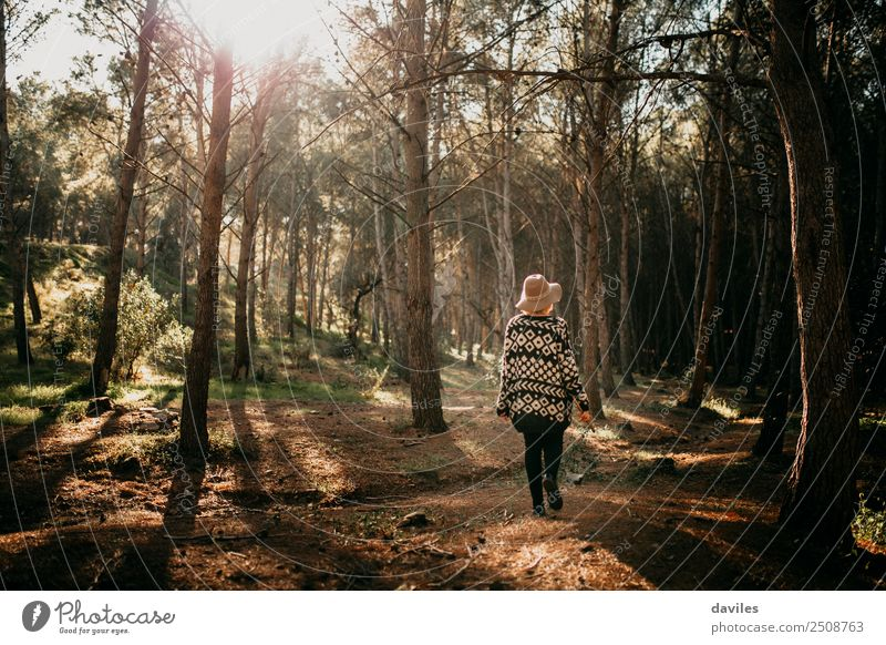 Young woman with hat taking a walk in the deep forest at sunset. Human being Nature Vacation & Travel Youth (Young adults) Plant Landscape Tree Joy Forest