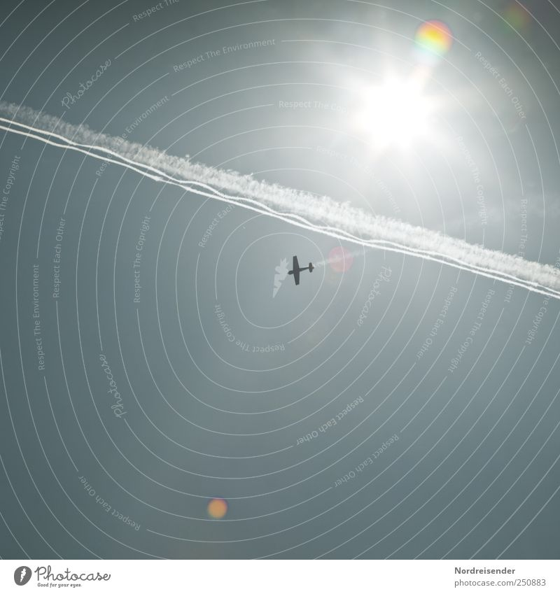 Sky Blue Sun Lanes & trails Line Flying Airplane Lifestyle Aviation Stripe Logistics String Touch Beautiful weather Attentive Lens flare
