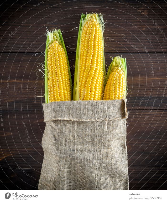 ripe yellow corn cobs Vegetable Nutrition Vegetarian diet Table Wood Old Eating Fresh Natural Above Brown Yellow bag agriculture background Farm food grain