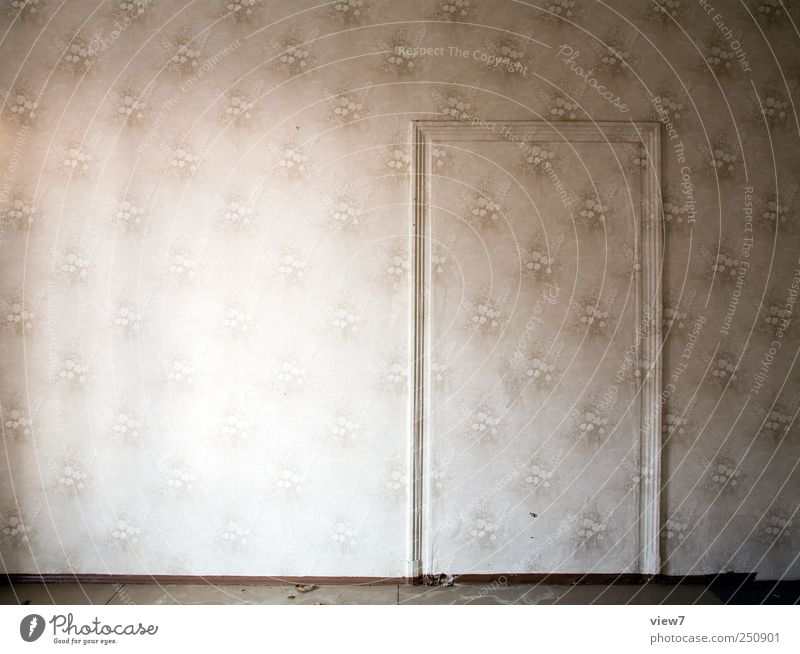 mimicry Redecorate Wallpaper Wall (barrier) Wall (building) Door Line Stripe Old Exceptional Uniqueness Cold Elegant Apocalyptic sentiment Eternity Arrangement