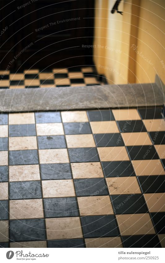 want a check? Floor covering Hallway Yellow Black Living or residing Checkered Square Dirty Pattern Symmetry Colour photo Interior shot