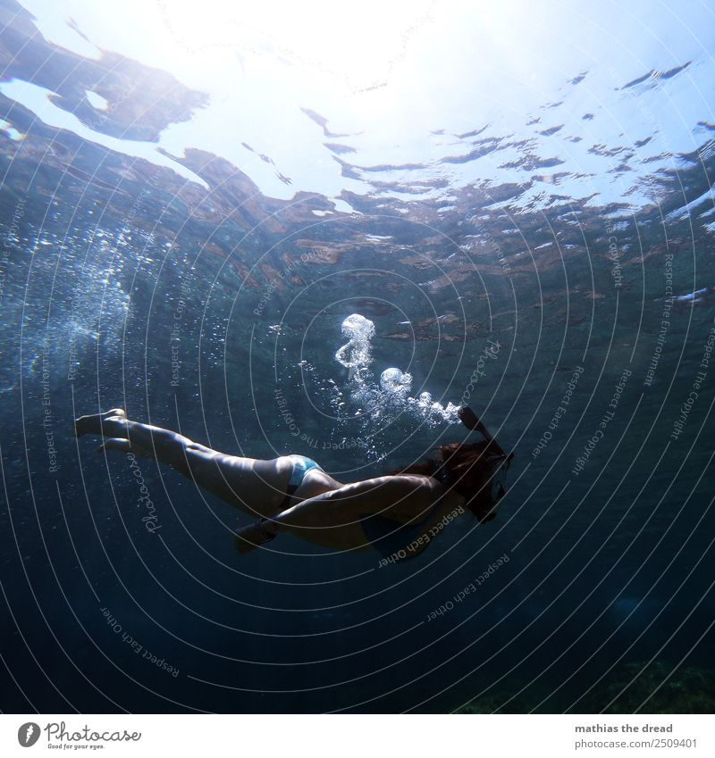 under the sea Joy Athletic Relaxation Calm Vacation & Travel Tourism Summer vacation Ocean Island Waves Sports Aquatics Swimming & Bathing Dive Snorkeler
