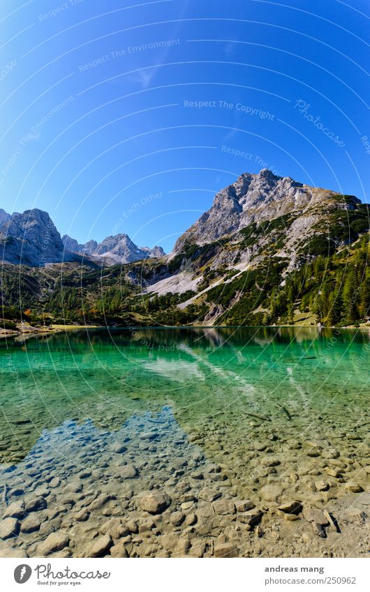 Clear Worlds Environment Nature Water Summer Beautiful weather Alps Mountain Peak Lakeside Fresh Green Adventure Loneliness Discover Relaxation Freedom