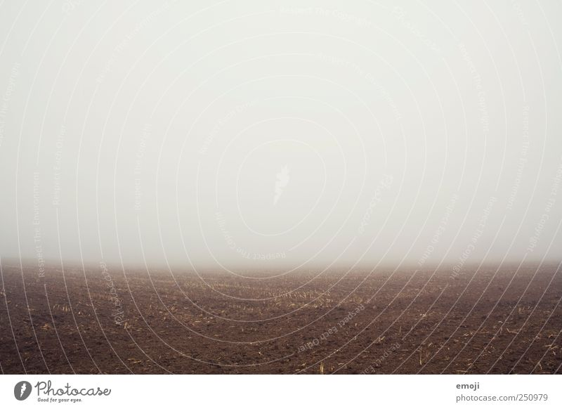 The earth is a disk. Environment Nature Landscape Earth Bad weather Fog Field Dark Gloomy Fog bank Wall of fog Misty atmosphere Creepy world view Slice Empty