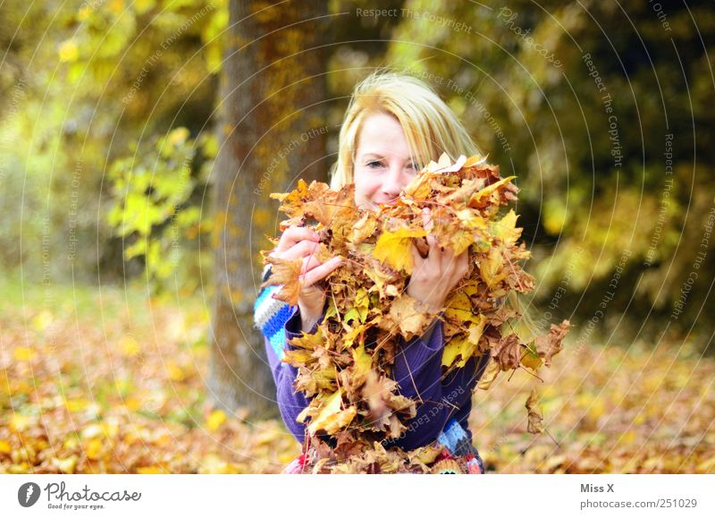 in a pile of leaves Playing Human being Feminine Young woman Youth (Young adults) 1 18 - 30 years Adults Nature Autumn Beautiful weather Tree Leaf Garden Park