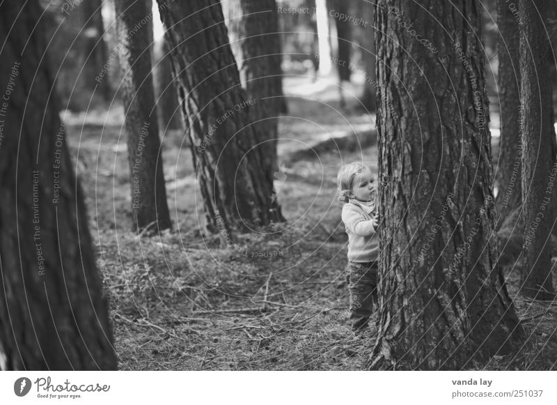 Cornerstone Cornerstone! Playing Human being Child Toddler Girl Infancy Life 1 1 - 3 years Tree Moss Tree trunk Forest Touch Stand Gray Moody Curiosity Interest