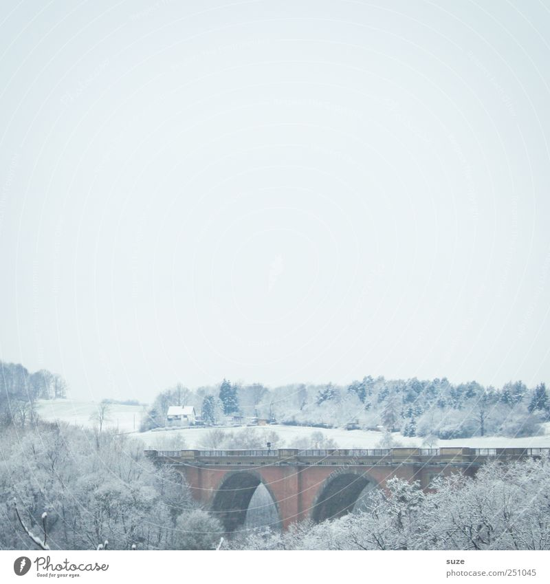 Elster Valley Bridge Environment Nature Landscape Elements Air Sky Cloudless sky Horizon Winter Snow Tree Forest Manmade structures Esthetic Authentic Bright