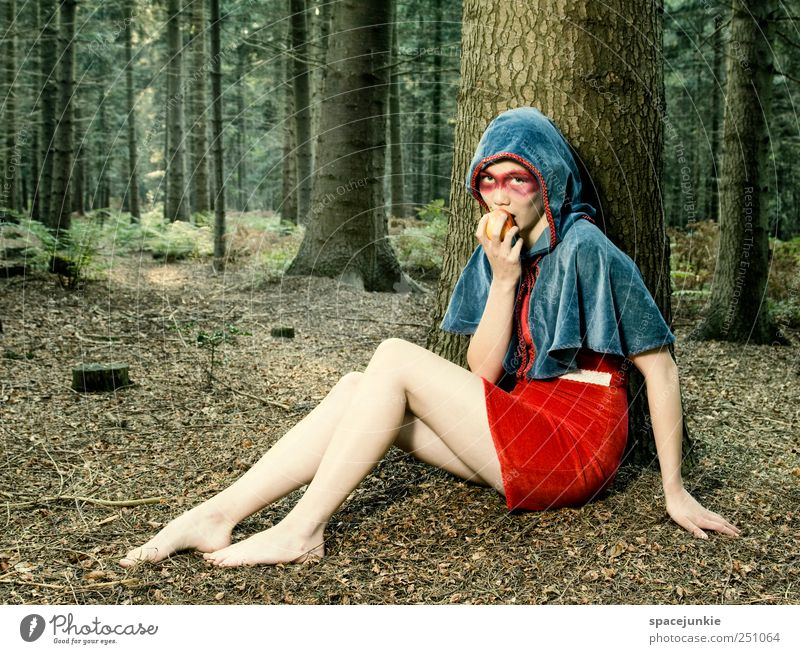 Human being Nature Youth (Young adults) Blue Beautiful Tree Red Forest Feminine Nutrition Environment Landscape Emotions Adults Moody Fashion