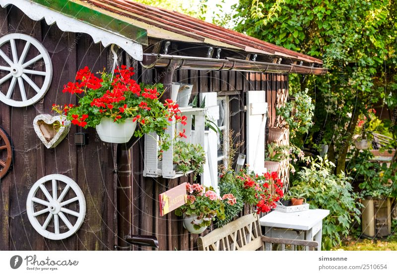Garden hut with flowers in summer Summer Table Flower Blossom Hut Eaves Traffic light White Wooden hut garden shed Bavaria Geranium planted Rain gutter idyllic