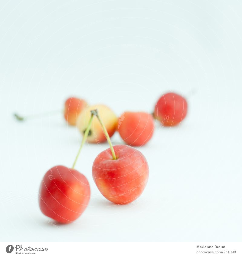 Nature Green Beautiful Red Black Yellow Nutrition Food Small Fruit Wild Sweet Round Apple Sphere Delicious