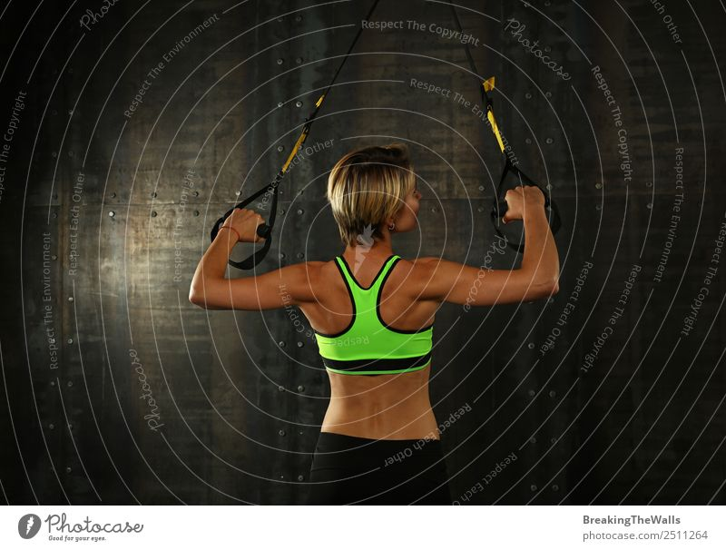 Rear view portrait of one young athletic woman at crossfit training, exercising with trx suspension fitness straps over dark background Lifestyle Sports Fitness
