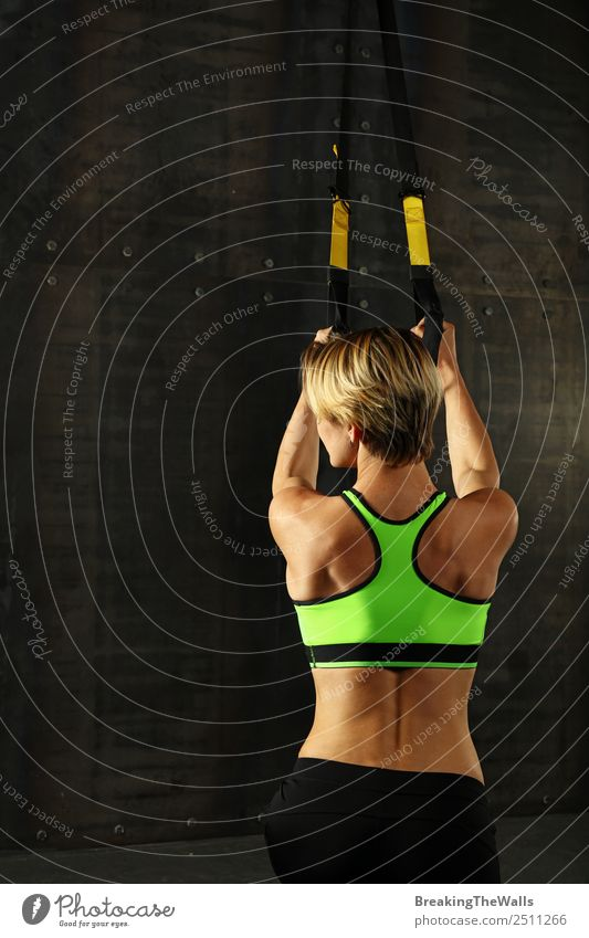 Rear view portrait of one young athletic woman at crossfit training, exercising with trx suspension fitness straps over dark background Lifestyle Body Sports