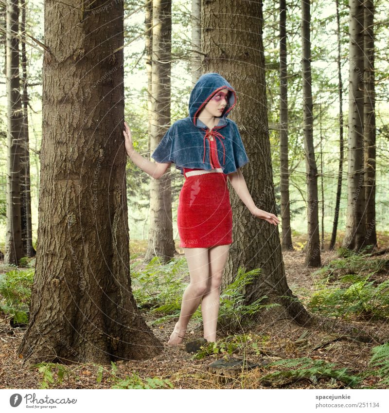 Human being Nature Youth (Young adults) Blue Tree Plant Red Forest Feminine Landscape Emotions Adults Fashion Wait Exceptional Bushes